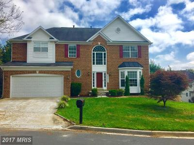 Single Family Home For Sale: 20405 Mill Pond Terrace