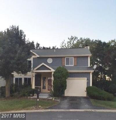 Burtonsville Single Family Home For Sale: 6 Saddle Creek Court