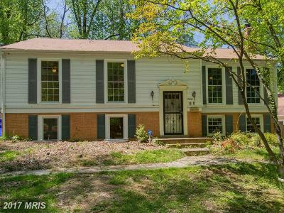 Bethesda Single Family Home For Sale: 9806 Raleigh Tavern Court
