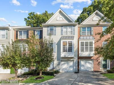 Silver Spring Single Family Home For Sale: 2003 Wheaton Haven Court