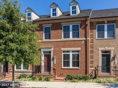 Gaithersburg Townhouse For Sale: 212 Parkview Avenue