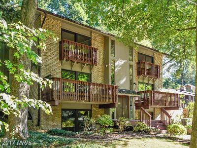 Silver Spring Single Family Home For Sale: 1217 Edgevale Road