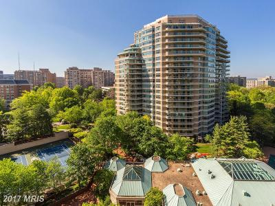 Chevy Chase Condo For Sale: 5600 Wisconsin Avenue #306