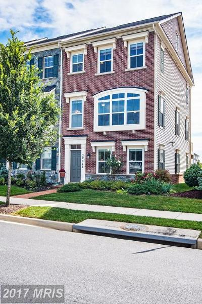 Clarksburg Townhouse For Sale: 22617 Sweetspire Drive