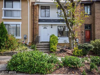 Silver Spring Townhouse For Sale: 14207 Castle Boulevard #30-193