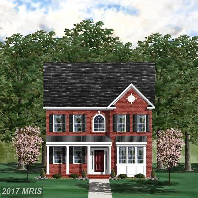Clarksburg Single Family Home For Sale: 22000 Winding Woods Way