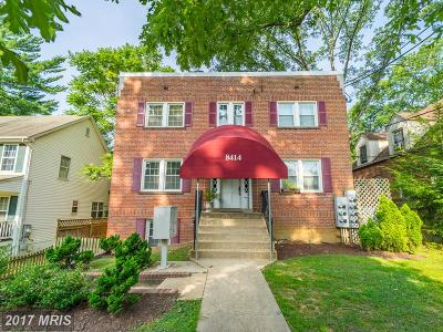 Takoma Park Condo For Sale: 8414 Flower Avenue #2