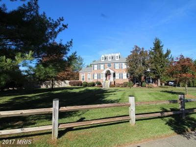 Poolesville Single Family Home For Sale: 17000 Spates Hill Road