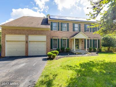 Silver Spring Single Family Home For Sale: 3 Jaystone Court