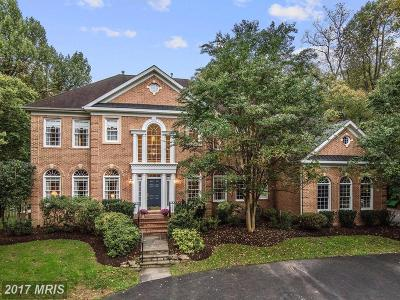 Germantown Single Family Home For Sale: 15410 River Road