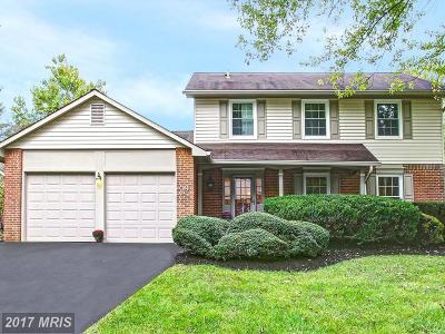 Potomac Single Family Home For Sale: 19 Pebble Ridge Court