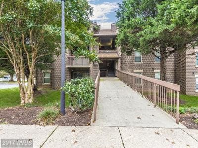 Gaithersburg Condo For Sale: 18420 Guildberry Drive #202