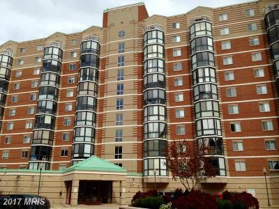 Montgomery Condo For Sale: 24 Courthouse Square #401