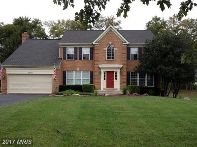 Poolesville Single Family Home For Sale: 19744 Selby Avenue