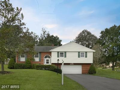 Olney Single Family Home For Sale: 18728 Willow Grove Road