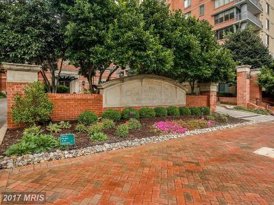 Rockville Condo For Sale: 11710 Old Georgetown Road #506
