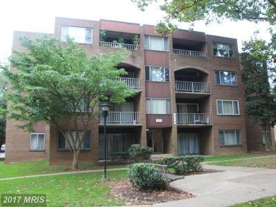 Gaithersburg Condo For Sale: 428 Girard Street #174