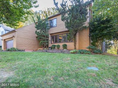Silver Spring Single Family Home For Sale: 12309 Loft Lane