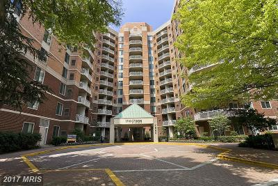 Bethesda Condo For Sale: 7500 Woodmont Avenue #S309