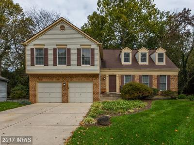 Silver Spring Single Family Home For Sale: 11424 Symphony Woods Lane