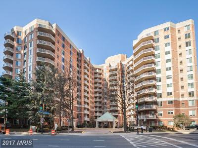 Bethesda Condo For Sale: 7500 Woodmont Avenue #S713