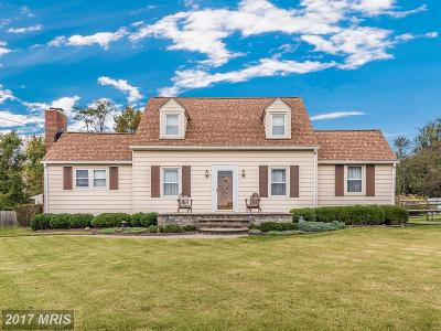 Gaithersburg Single Family Home For Sale: 23724 Pleasant View Lane