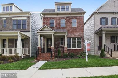Clarksburg Single Family Home For Sale: 13725 Lapwing Way