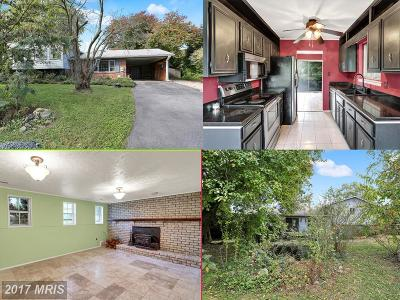 Gaithersburg Single Family Home For Sale: 25004 Woodfield School Road