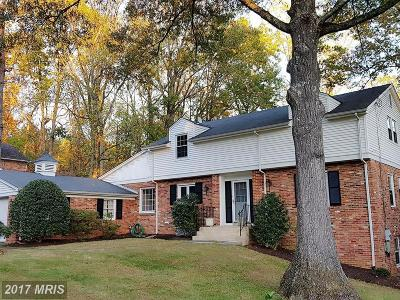 Potomac Single Family Home For Sale: 11211 Willowbrook Drive