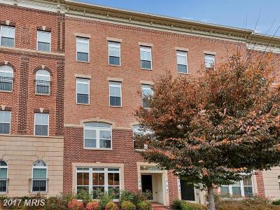 Gaithersburg Townhouse For Sale: 228 Urban Avenue