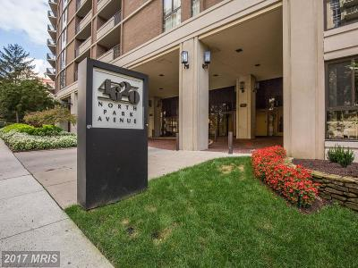 Chevy Chase Condo For Sale: 4620 N Park Avenue #408E