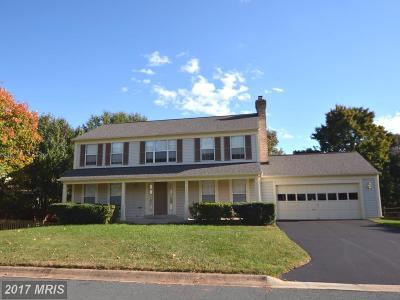 Silver Spring Single Family Home For Sale: 14417 Basingstoke Lane