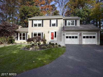 Brookeville, Olney Single Family Home For Sale: 18405 Shady View Lane