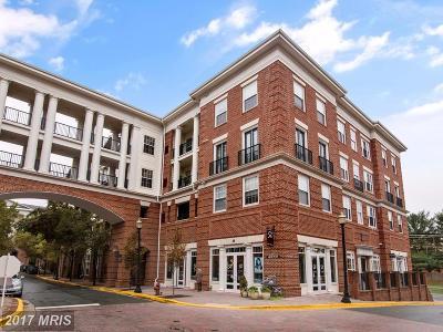 Gaithersburg Condo For Sale: 7 Granite Place #318