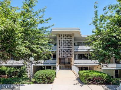 Bethesda Condo For Sale: 7557 Spring Lake Drive #B-2