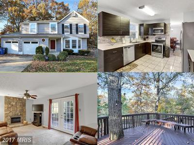 Silver Spring Single Family Home For Sale: 13036 Gershwin Way