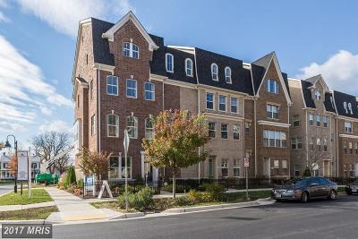 Gaithersburg Townhouse For Sale: 303 Crown Park Avenue