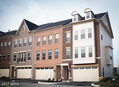 Montgomery Townhouse For Sale: 10215 Hilltop Ascent Drive