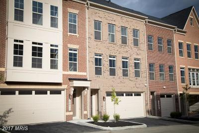 Montgomery Townhouse For Sale: 10209 Hilltop Ascent Drive