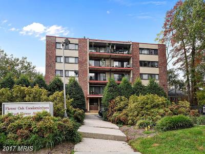 Takoma Park Condo For Sale: 8308 Flower Avenue #102
