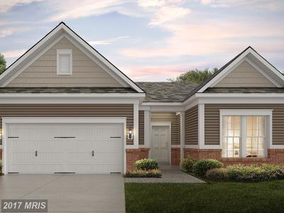 Montgomery Single Family Home For Sale: 21841 Boneset Way