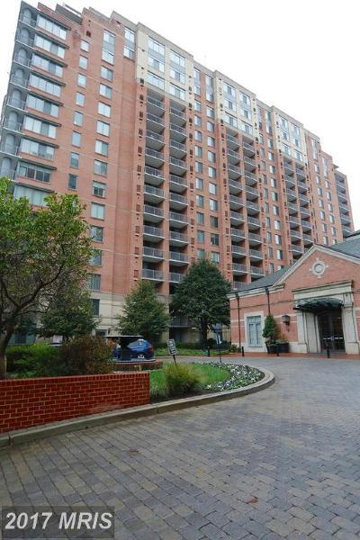 Washington, Montgomery, Fairfax Rental For Rent: 11710 Old Georgetown Road #728