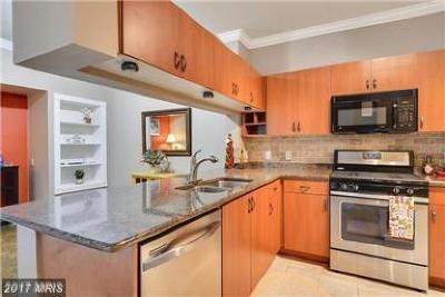Washington, Montgomery, Fairfax Rental For Rent: 19623 Galway Bay Circle #203