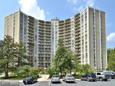 Silver Spring Condo For Sale: 9039 Sligo Creek Parkway #1410