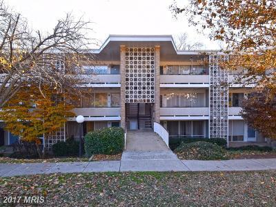 Bethesda Condo For Sale: 7513 Spring Lake Drive #B-2