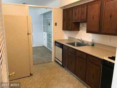 Bethesda Condo For Sale: 7533 Spring Lake Drive #D-1
