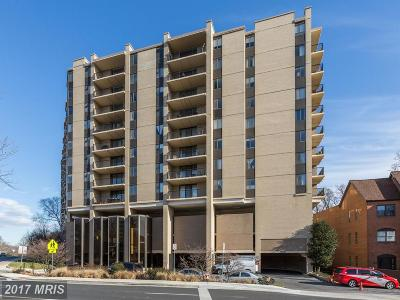 Chevy Chase Condo For Sale: 4242 East West Highway #608