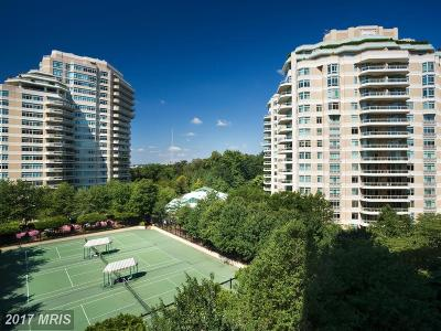 Chevy Chase Condo For Sale: 5610 Wisconsin Avenue #1102
