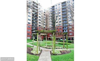 Takoma Park Condo For Sale: 7333 New Hampshire Avenue #510