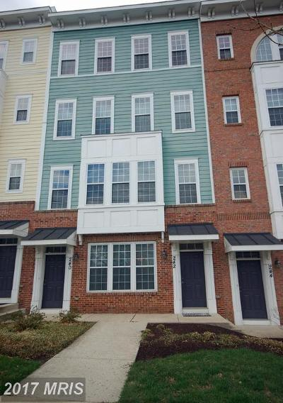 Gaithersburg Townhouse For Sale: 242 Summit Avenue N #21